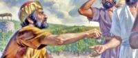 Św. Mateusza, Apostoła i Ewangelisty – Święto
